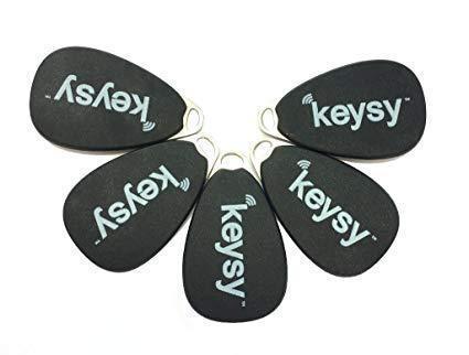 Hak5 RFID Keysy - HackmoD